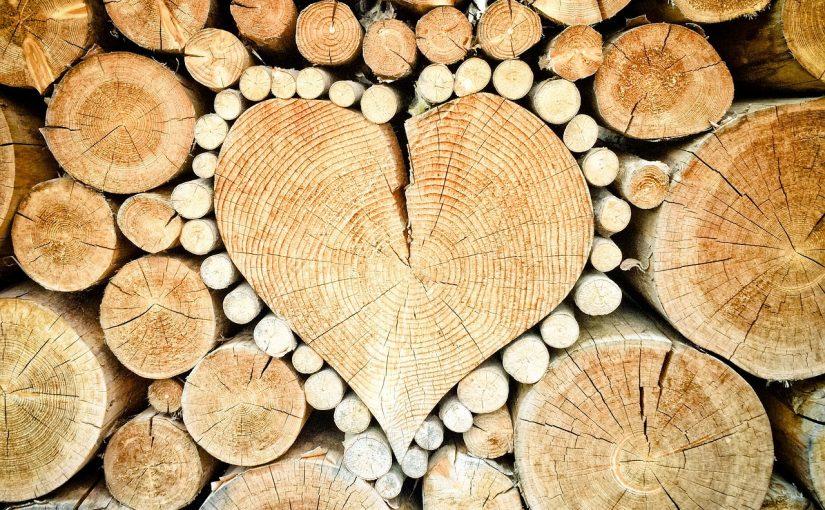 La fête du bois: Francheville, Vosges, Usson-en-Forez